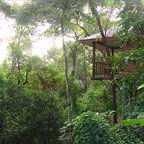 Port Douglas Info Holiday Packages Amp Tours
