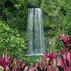 BEAUTIFUL MILLAA MILLAA FALLS
