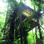 Daintree Eco Lodge & Spa