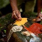 Aboriginal Culture Daintree