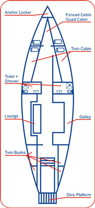 VESSEL LAYOUT