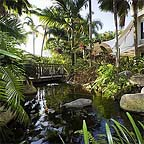tropical rainforest gardens