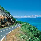 SCENIC DRIVE TO THE DAINTREE