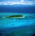 GREEN ISLAND