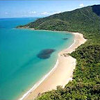 Daintree Magic