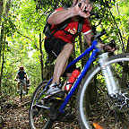 Mulgrave Valley Mountain Biking