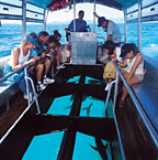 GLASS BOTTOM BOAT OR