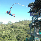AJ Hacket Bungy Jump