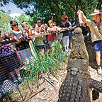 HARTLEY'S CROC SHOW