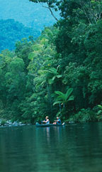 CANOEING & SNORKELLING ON THE MOSSMAN RIVER