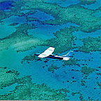 DAINTREE AIR