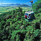 RAINFOREST CABLEWAY