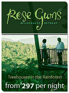 Rose Gums - Wilderness Retreat