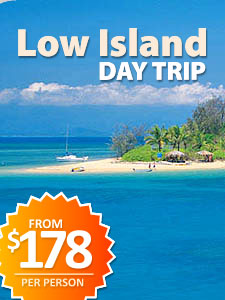 Low Island Day Trip ex Port Douglas
