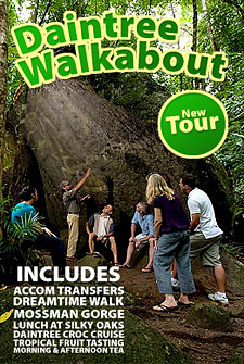 Down Under Tours Daintree Walkabout Tour