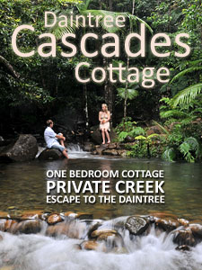 Daintree Cascades Cottage