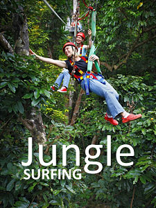 Daintree Jungle Surfing