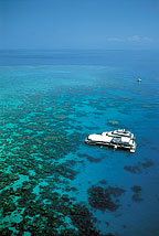 OUTER BARRIER REEF CRUISE