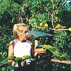 HAND FEEDING AT BIRDWORLD KURANDA