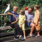 HAND FEEDING  BIRDWORLD KURNDA