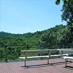 view over the rainforest canopy