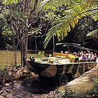 RAINFORESTATION ARMY DUCK CRUISE