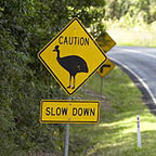 CASSOWARY CROSSING ROAD SIGN