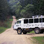 4WD DAY TRIP TO THE DAINTREE RAINFOREST