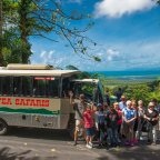 Daintree River Croc Cruise