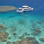 Great Barrier Reef Tours Depart Trinity Beach Daily