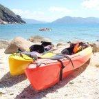 Sea Kayak - Return Ferry from Cairns