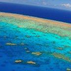 Kuranda & Reef Combo