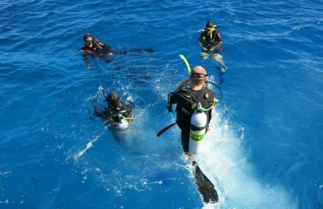 Cairns padi advanced open water cairns - Pro dive cairns ...