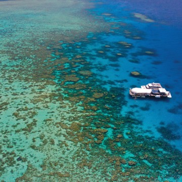 Green Island & Reef Tours