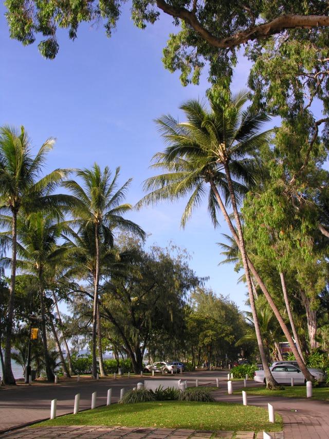 Bts Tours Cairns