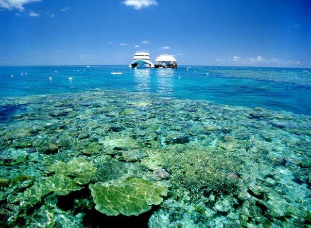 WhitsundayIslands Info com - Great Barrier Reef Adventure