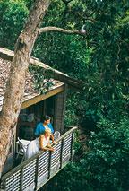 Hinchinbrook Island Resort