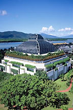 the rainforest dome