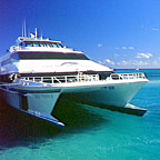 THE REEF PRINCE TRASFER VESSEL