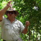 OUR RAINFORESTATION GUIDE