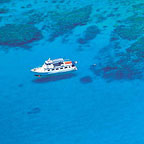 REEF TRIP EX MISSION BEACH