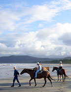 HORSE RIDING ON WONGA BEACH