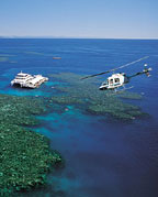 TRANSFERS TO GREAT BARRIER REEF