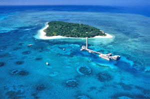 Family Reef Trips from Cairns