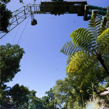 Bungy & Swings