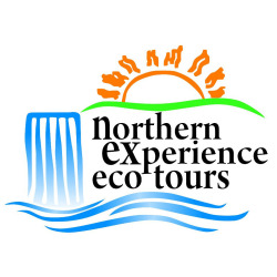 Northern Experience Eco Tours logo