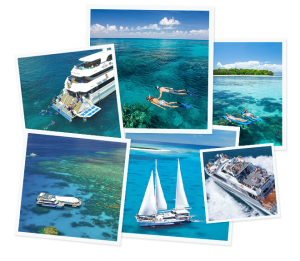 Great Barrier Reef Day Tours from Cairns