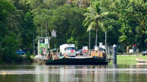 Daintree River Ferry Price